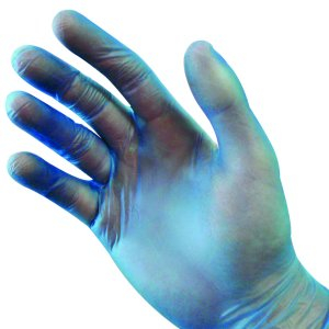 Vinyl Powder Free Blue Gloves - Case