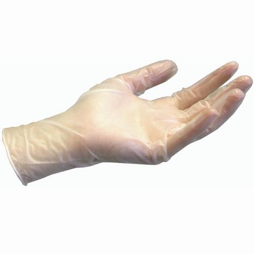 Vinyl Powder Free Clear Gloves - Case