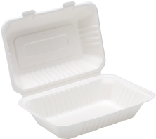 9 x6 inch Bagasse Lunch Box 2x x125