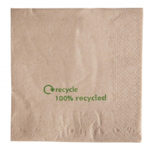 Kraft Lunch Napkins Recycled 3 30 x 330mm