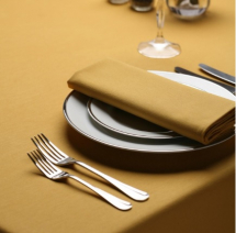 Amalfi Slip Cloth  - Gold