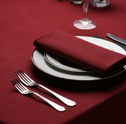 Signature Plus Burgundy Napkin - 51cm x 51cm